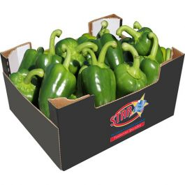 FRESH GREEN PEPPERS CAPSICUM CASE